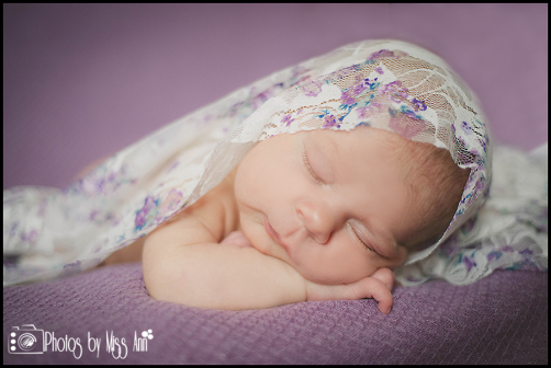 Favorite Newborn Photographer Plymouth Michigan Photos by Miss Ann