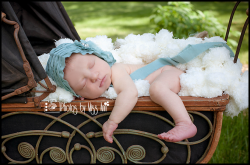 Best Newborn Photographer Northville Michigan Photos by Miss Ann