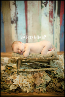Metro Detroit Newborn Photographer Newborn on wood Bench