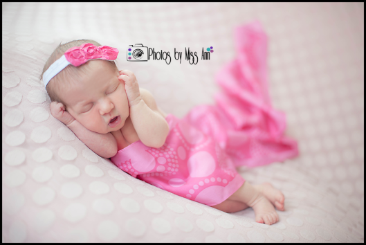 Plymouth Michigan Newborn Photographer Photos by Miss Ann