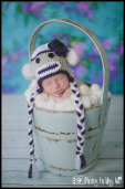 Detroit Michigan Newborn Photographer Photos by Miss Ann Newborn Girl Portrait Ideas