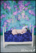 Victorian Newborn Girl Session Plymouth Michigan Newborn Photographer Photos by Miss Ann