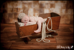 Vintage Baby Girl Newborn Session Plymouth Michigan Newborn Photographer Photos by Miss Ann
