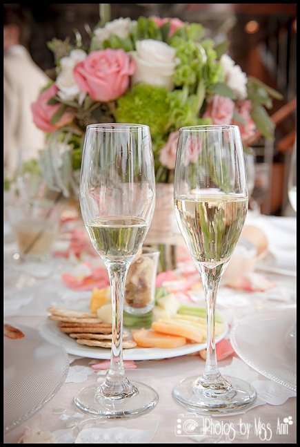 Champagne Toast Michigan Wedding Details Photos by Miss Ann