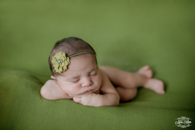 Iceland Child Photographer-Photos by Miss Ann-Newborn Photographer Reykjavik
